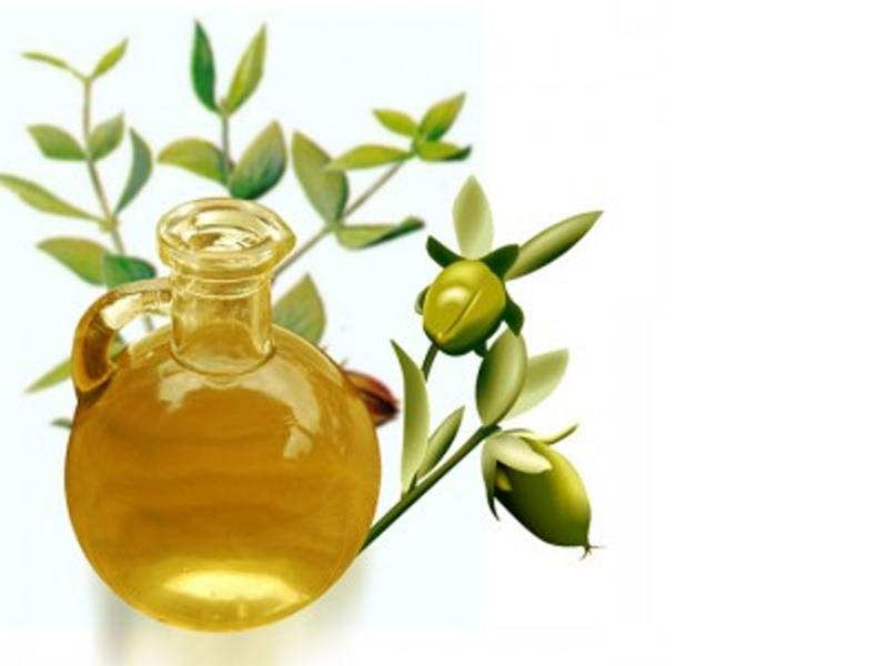 Blagodeti  prirode - ulje jojobe
