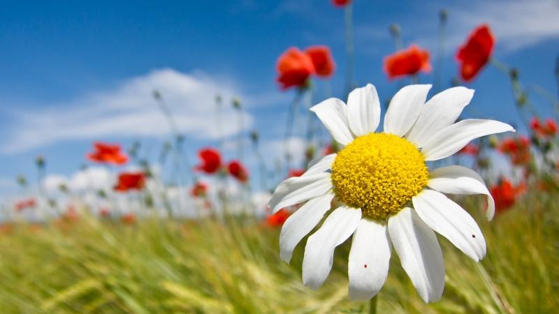 Nega kože, najbolji način da zablistate ovog proleća
